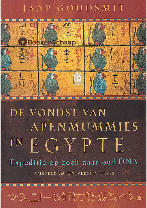 De vondst van apenmummies in Egypte