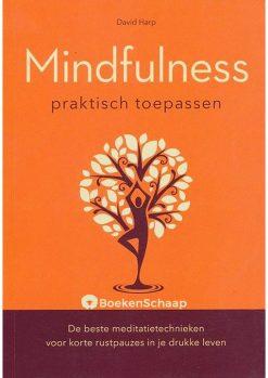 Mindfulness praktisch toepassen
