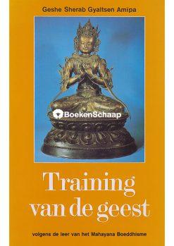 Training van de geest