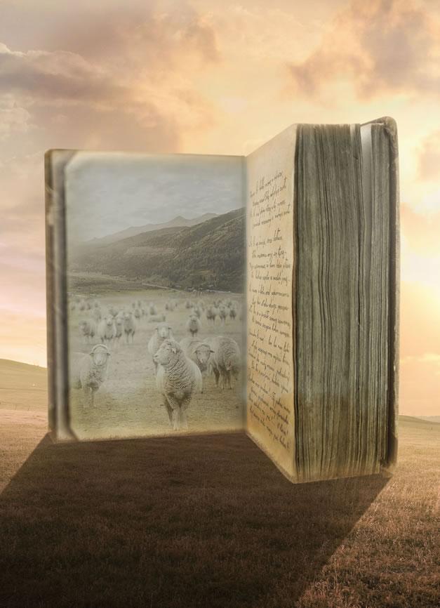 BoekenSchaap